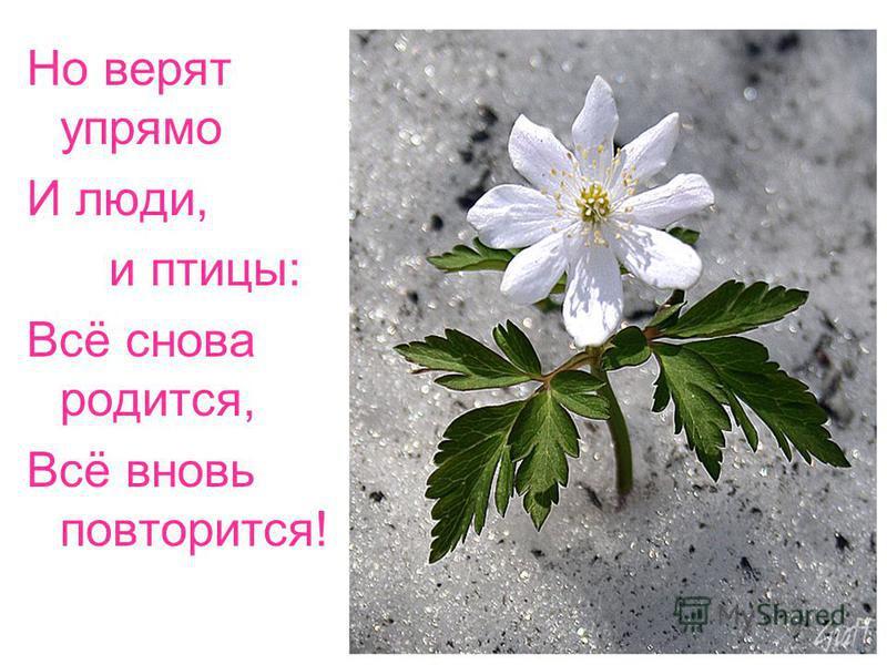 Но верят упрямо И люди, и птицы: Всё снова родится, Всё вновь повторится!