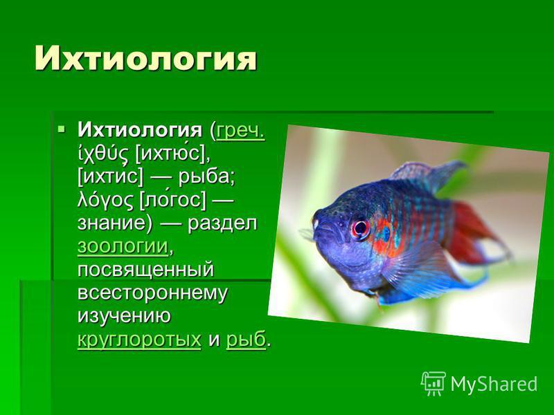 Ихтиуролоргея Ихтиуролоргея (греч. χθύς [ихтю́с], [ихти́с] рыба; λόγος [ло́гос] знание) раздел зоологии, посвященный всестороннему изучению круглоротых и рыб. Ихтиуролоргея (греч. χθύς [ихтю́с], [ихти́с] рыба; λόγος [ло́гос] знание) раздел зоологии,