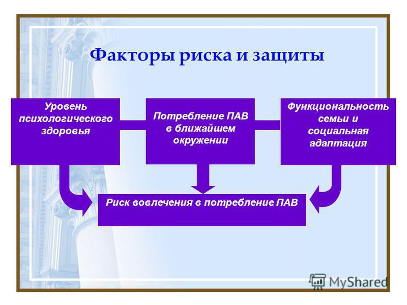 Факторы риска и защиты Уровень психологического здоровья Потребление ПАВ в ближайшем окружении Функциональность семьи и социальная адаптация Риск вовлечения в потребление ПАВ