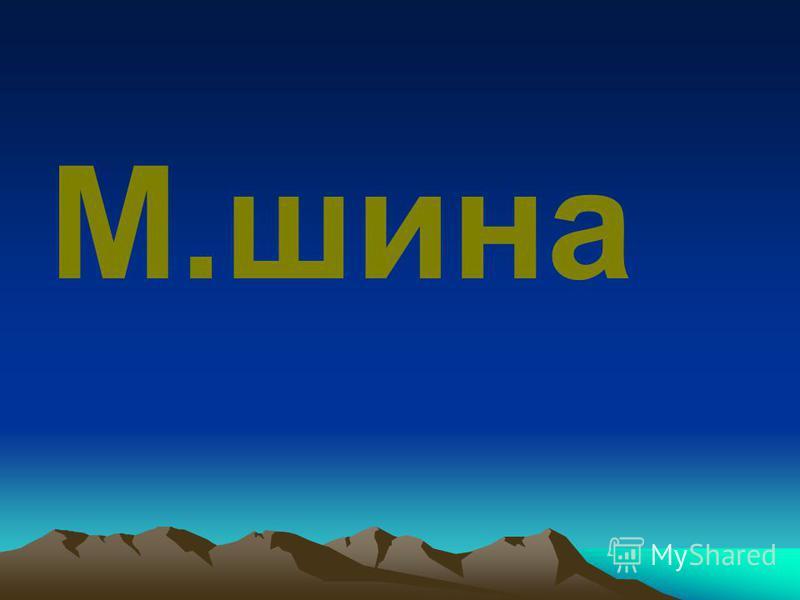 М.шина