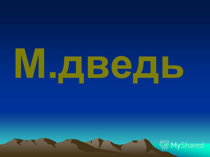 М.дведь