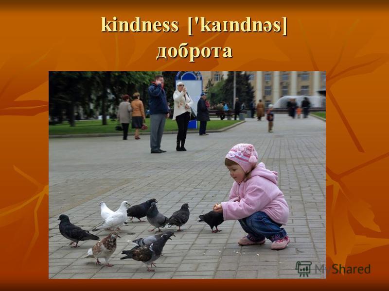 kindness ['ka ɪ ndnəs] доброта