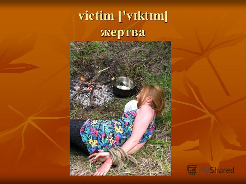victim ['v ɪ kt ɪ m] жертва