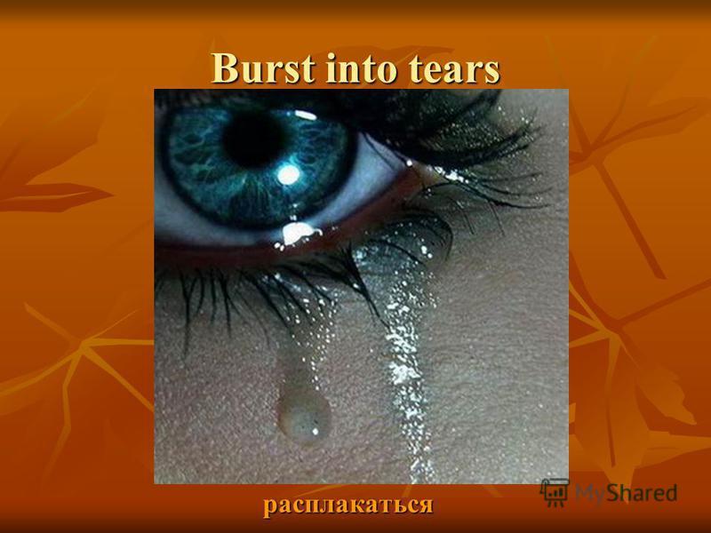Burst into tears расплакаться расплакаться