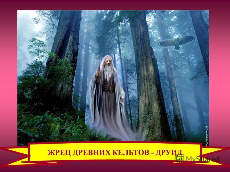 ЖРЕЦ ДРЕВНИХ КЕЛЬТОВ - ДРУИД