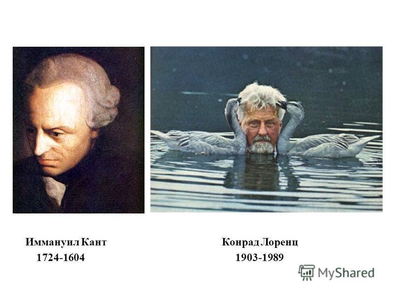 Иммануил Кант Конрад Лоренц 1724-1604 1903-1989