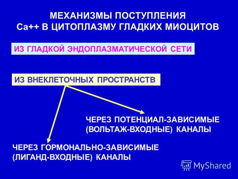 МЕХАНИЗМЫ ПОСТУПЛЕНИЯ Са++ В ЦИТОПЛАЗМУ ГЛАДКИХ МИОЦИТОВ ИЗ ГЛАДКОЙ ЭНДОПЛАЗМАТИЧЕСКОЙ СЕТИ ИЗ ВНЕКЛЕТОЧНЫХ ПРОСТРАНСТВ ЧЕРЕЗ ГОРМОНАЛЬНО-ЗАВИСИМЫЕ (ЛИГАНД-ВХОДНЫЕ) КАНАЛЫ ЧЕРЕЗ ПОТЕНЦИАЛ-ЗАВИСИМЫЕ (ВОЛЬТАЖ-ВХОДНЫЕ) КАНАЛЫ