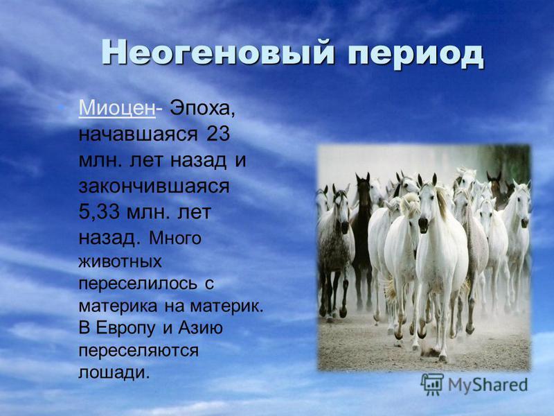 Неогеновый период Миоцен- Эпоха, начавшаяся 23 млн. лет назад и закончившаяся 5,33 млн. лет назад. Много животных переселилось с материка на материк. В Европу и Азию переселяются лошади.