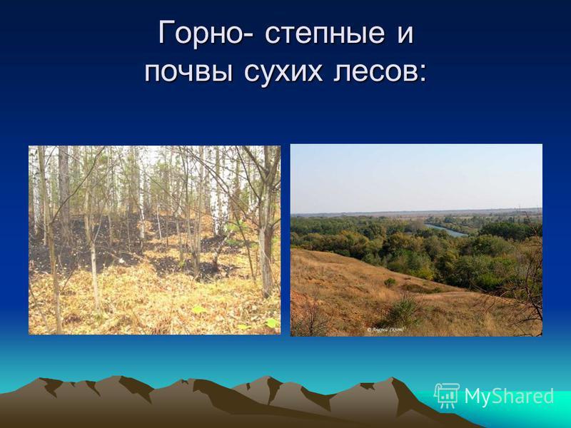 Горно- степные и почвы сухих лесов: