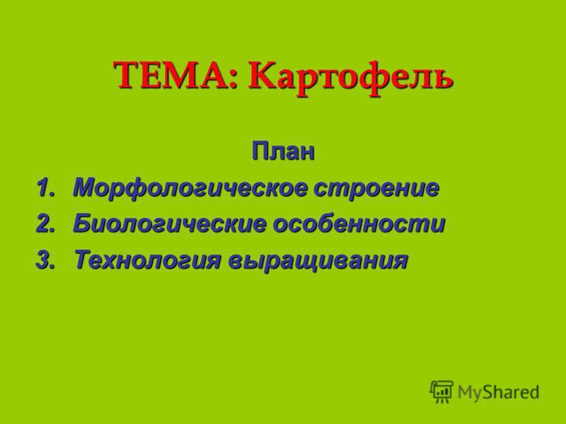 ТЕМА: Картофель План 1. Морфологическое строение 2. Биологические особенности 3. Технология выращивания