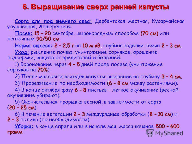 6. Выращивание сверх ранней капусты Сорта для под зимнего сева: Дербентская местная, Кусарчайская улучшенная, Апшеронская. 15 – 20 (70 см) 90/50 см. Посев: 15 – 20 сентября, широкорядным способом (70 см) или ленточным 90/50 см. 2 – 2,5 г 10 м кВ, 2 –