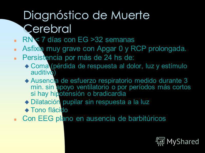 EEG normal a los 8 d Px excelente