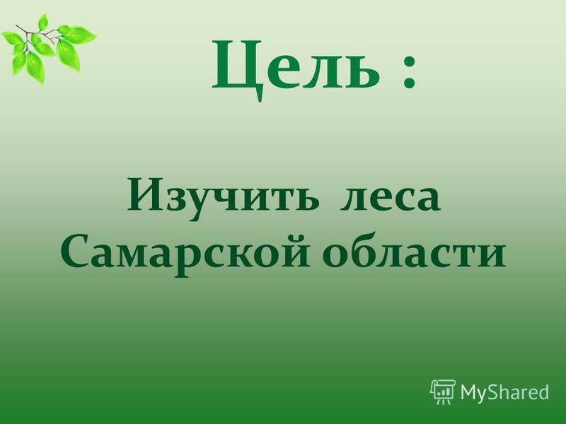 Цель : Изучить леса Самарской области