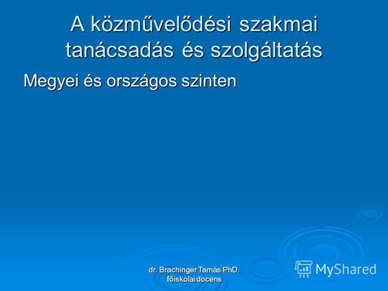 dr. Brachinger Tamás PhD. főiskolai docens A közművelődési szakmai tanácsadás és szolgáltatás Megyei és országos szinten