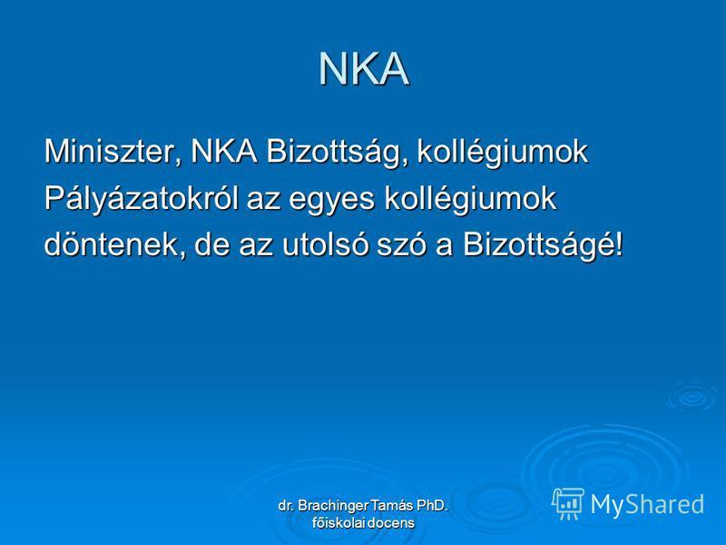 dr. Brachinger Tamás PhD. főiskolai docens NKA Miniszter, NKA Bizottság, kollégiumok Pályázatokról az egyes kollégiumok döntenek, de az utolsó szó a Bizottságé!