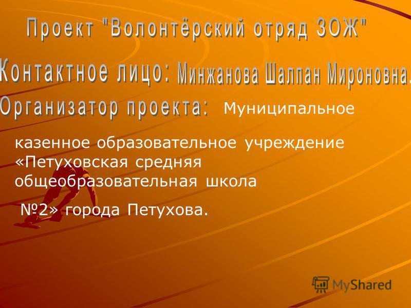 Муниципальное казенное образовательное учреждение «Петуховская средняя общеобразовательная школа 2» города Петухова.