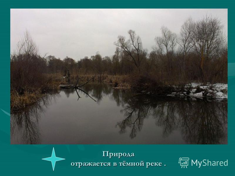 Природа отражается в тёмной реке.