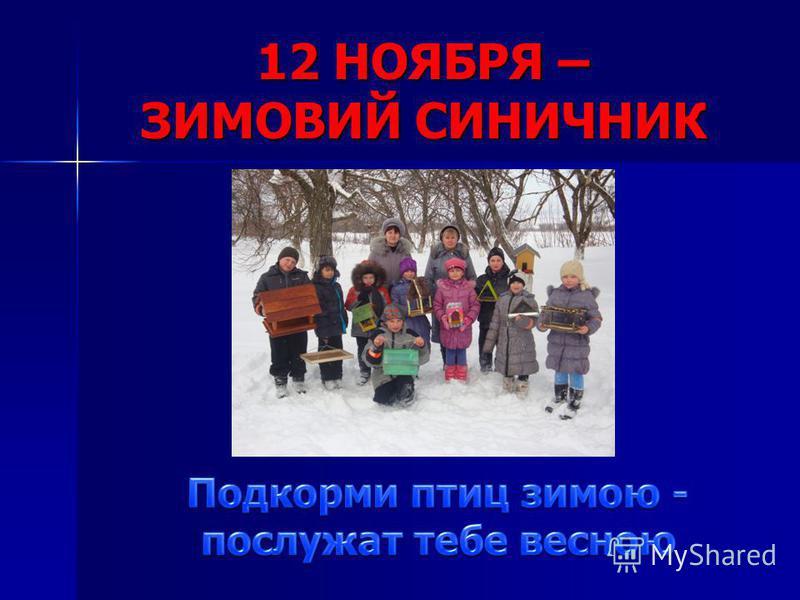 12 НОЯБРЯ – ЗИМОВИЙ СИНИЧНИК