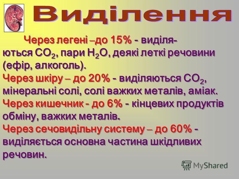 Через легені – до 15% - виділя - ються CO 2, пари Н 2 О, деякі леткі речовини (ефір, алкоголь). Через шкіру – до 20% - виділяються CO 2, мінеральні солі, солі важких металів, аміак. Через кишечник - до 6% - кінцевих продуктів обміну, важких металів.