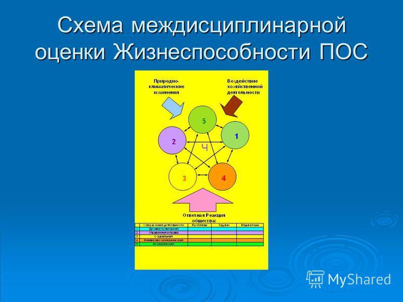 Схема междисциплинарной оценки Жизнеспособности ПОС Ч