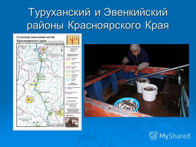 Туруханский и Эвенкийский районы Красноярского Края