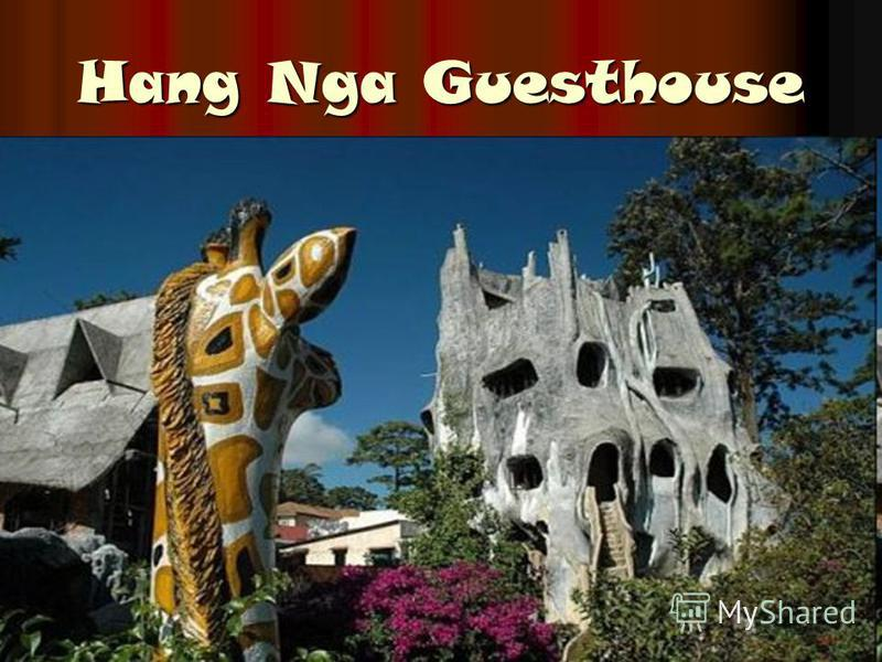 Hang Nga Guesthouse