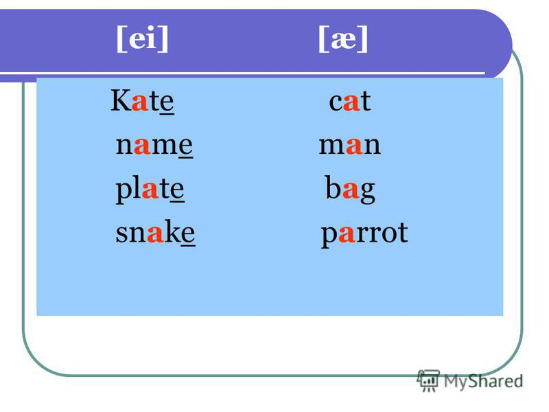 [ei] [æ] Kate cat name man plate bag snake parrot
