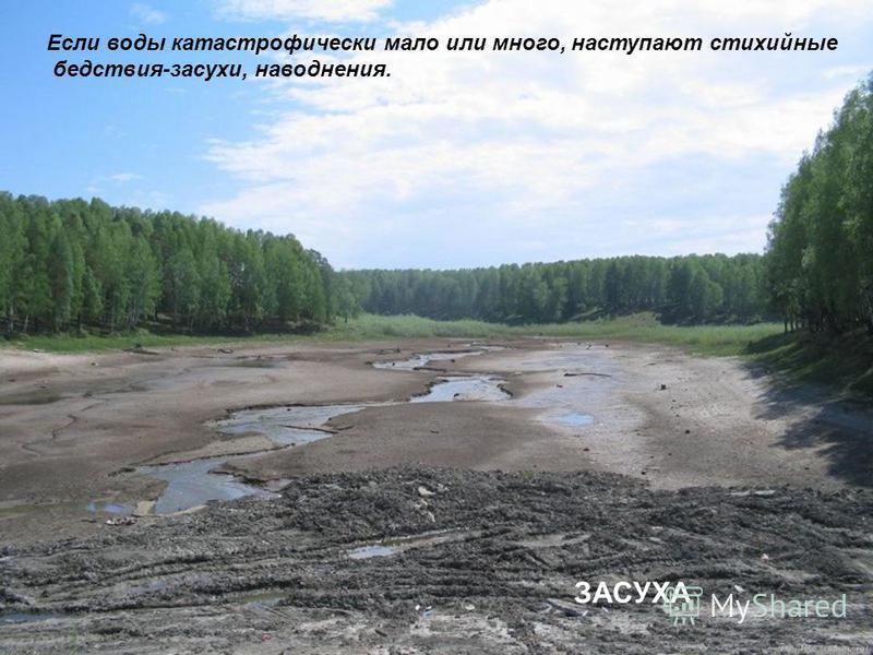 ЗАСУХА Если воды катастрофически мало или много, наступают стихийные бедствия-засухи, наводнения.