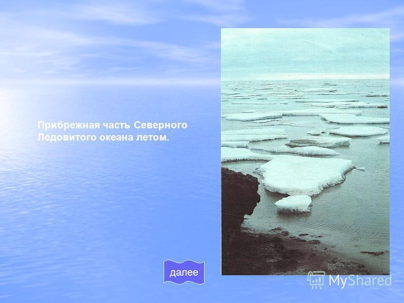 Прибрежная часть Северного Ледовитого океана летом. далее