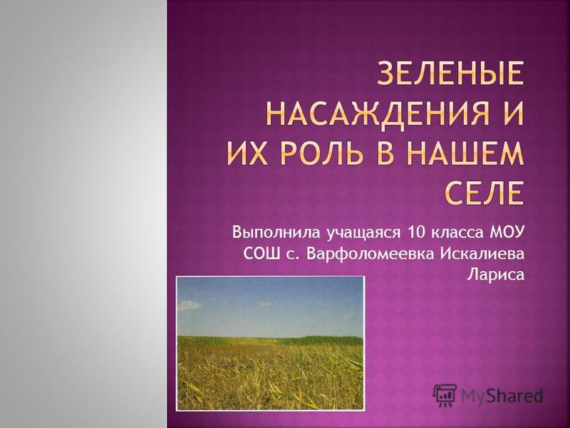 Выполнила учащаяся 10 класса МОУ СОШ с. Варфоломеевка Искалиева Лариса