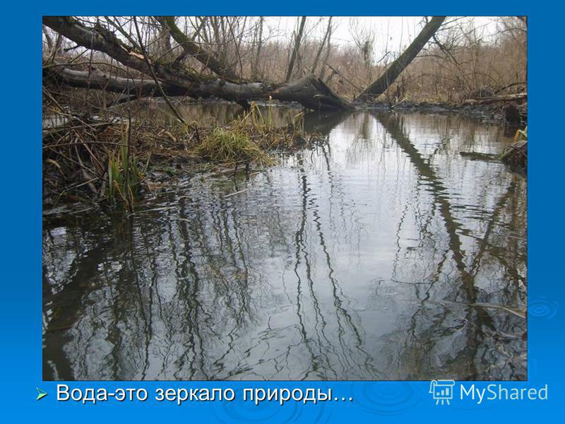 Вода-это зеркало природы… Вода-это зеркало природы…