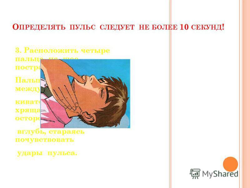 О ПРЕДЕЛЯТЬ ПУЛЬС СЛЕДУЕТ НЕ БОЛЕЕ 10 СЕКУНД ! 3. Расположить четыре пальца на шее пострадавшего. Пальцы расположенные между кивательной мышцей и хрящами гортани, осторожно продвигайте вглубь, стараясь почувствовать удары пульса.