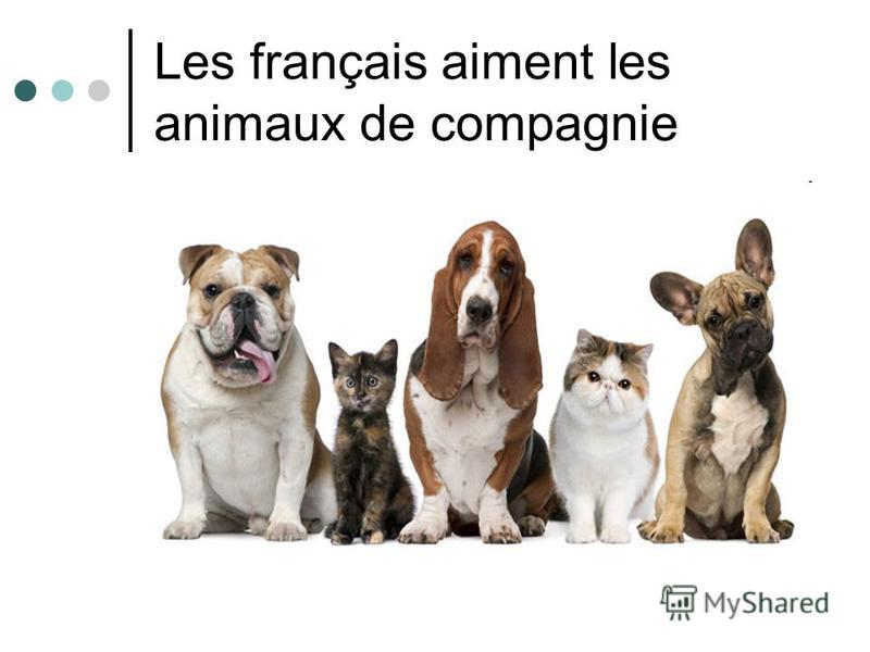 Les français aiment les animaux de compagnie