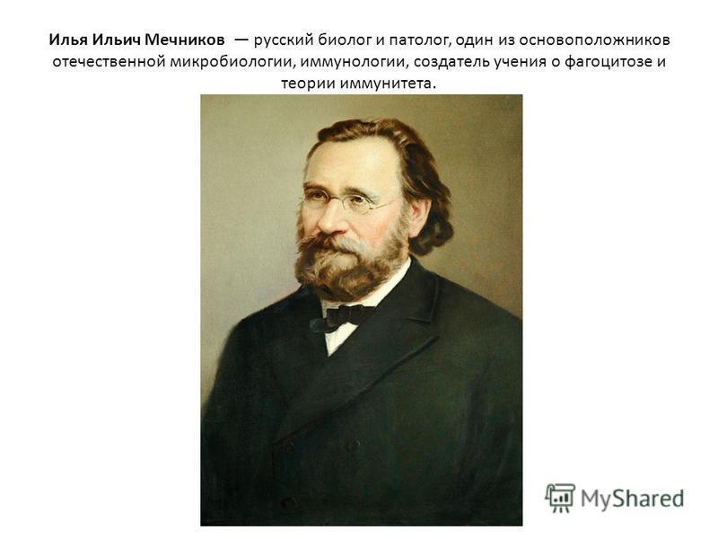 Илья Ильич Мечников русский биолог и патолог, один из основоположников отечественной микробиологии, иммунологии, создатель учения о фагоцитозе и теории иммунитета.