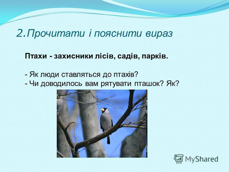 3. Групування птахів: Перелітні Зимуючі