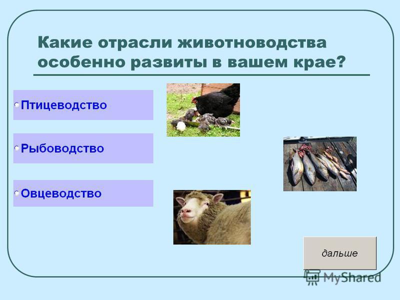 Какие отрасли животноводства особенно развиты в вашем крае?