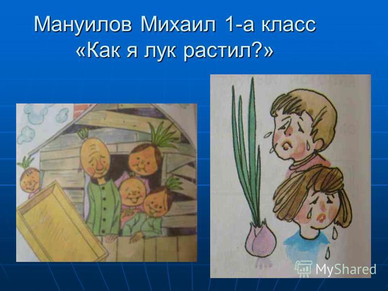 Мануилов Михаил 1-а класс «Как я лук растил?»