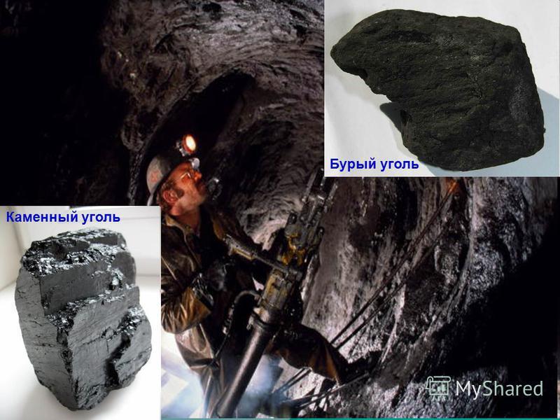 Бурый уголь Каменный уголь