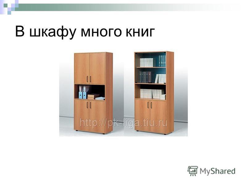 В шкафу много книг