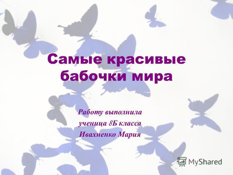 Самые красивые бабочки мира Работу выполнила ученица 8 Б класса Ивахненко Мария