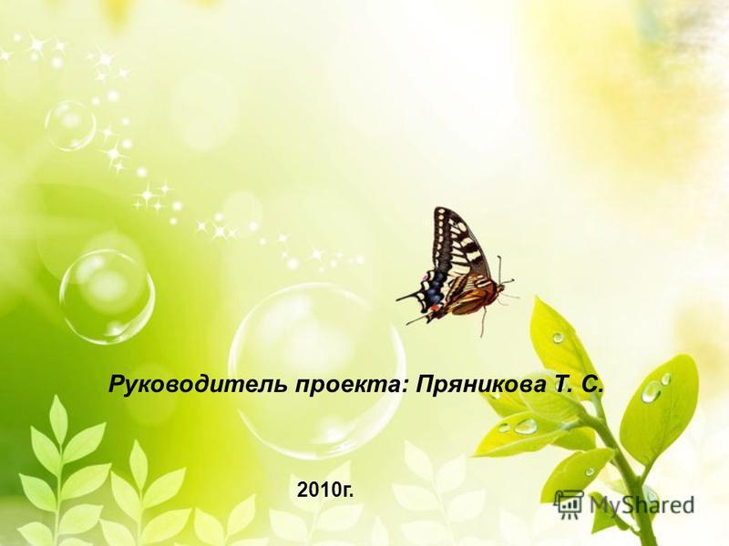 Руководитель проекта: Пряникова Т. С. 2010 г.