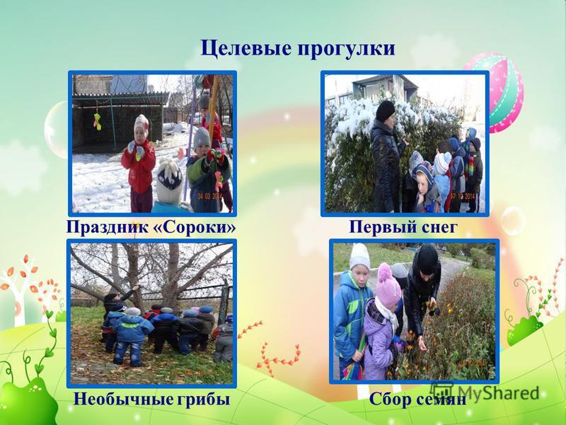 Целевые прогулки Праздник «Сороки»Первый снег Необычные грибы Сбор семян