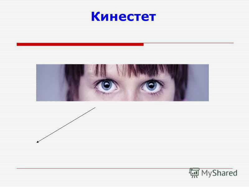 О Кинестет