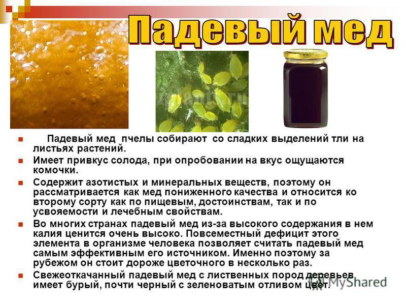 Падевый мед пчелы собирают со сладких выделений тли на листьях растений. Имеет привкус солода, при опробовании на вкус ощущаются комочки. Содержит азотистых и минеральных веществ, поэтому он рассматривается как мед пониженного качества и относится ко