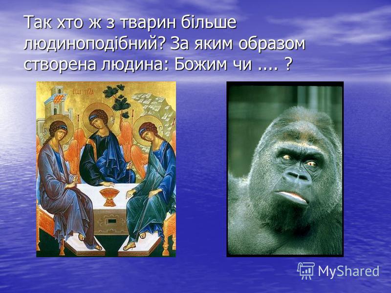 Так хто ж з тварин більше людиноподібний? За яким образом створена людина: Божим чи.... ?