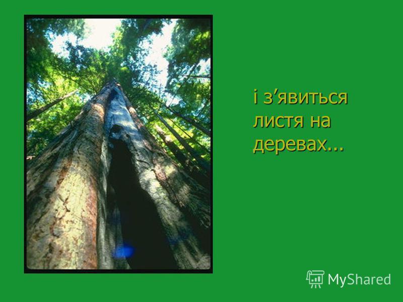 і зявиться листя на деревах...