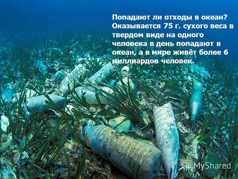 Попадают ли отходы в океан? Оказывается 75 г. сухого веса в твердом виде на одного человека в день попадают в океан, а в мире живёт более 6 миллиардов человек.