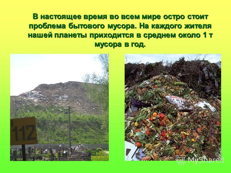 В настоящее время во всем мире остро стоит проблема бытового мусора. На каждого жителя нашей планеты приходится в среднем около 1 т мусора в год.
