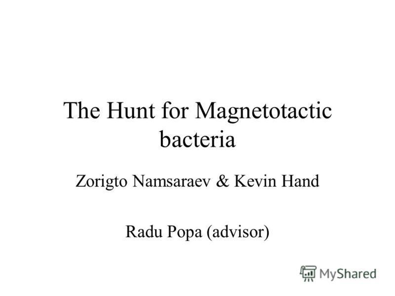 The Hunt for Magnetotactic bacteria Zorigto Namsaraev & Kevin Hand Radu Popa (advisor)