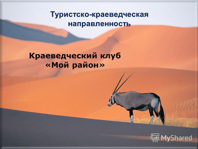 Туристско-краеведческая направленность Краеведческий клуб «Мой район»